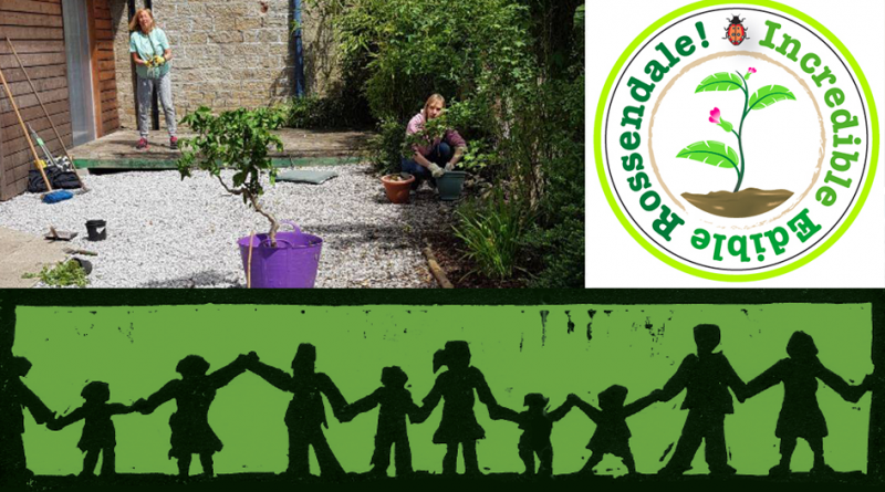 Incredible Edible + Baby Boo – Family Growing Workshop Tuesday 8th June 1pm and 2pm